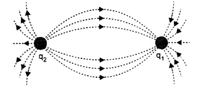 Gauss Law Diagram 07